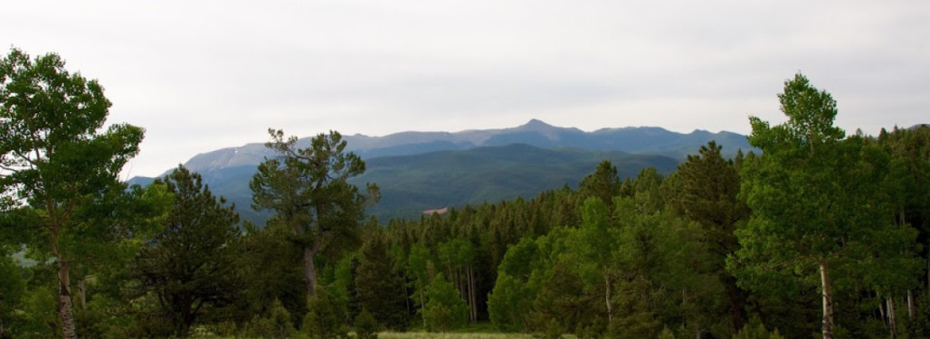 Rolling green meadows and incredible views of Pikes Peak!
