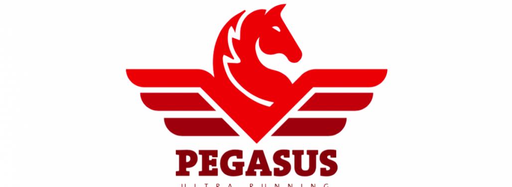 Pegasus Ultra Running