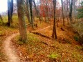 Seneca Greenway Trail